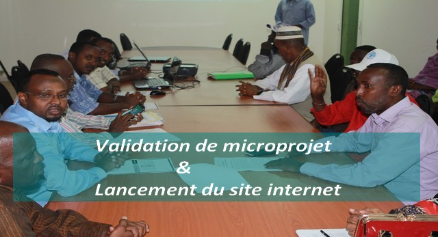 Validation de microprojet & Lancement du site internet